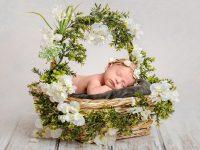KRiSfoto baby-K.R.Siekielski-www.krisfoto.pl-fotografika-fotografia-noworodkowa-zdjecie dziecka w koszyku-sesja fotogrfaiczna